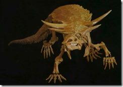 Desmatosuchus,_PFNP