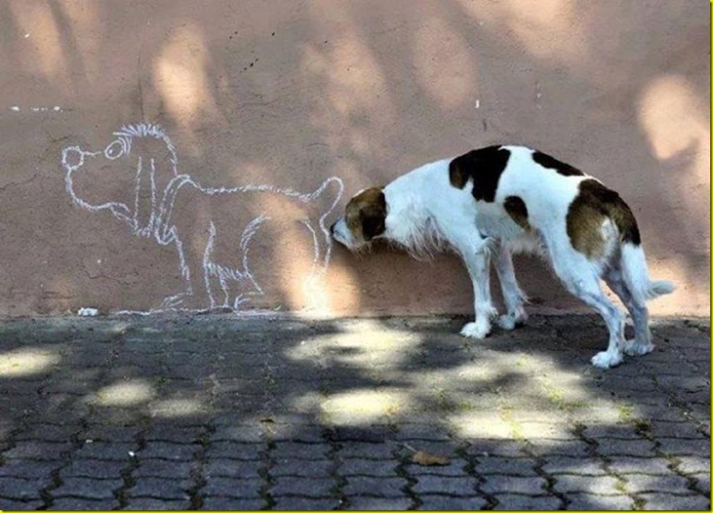 chien-sent-peinture-murale-600x432
