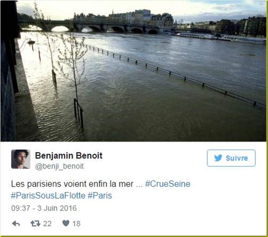 paysage parisien crue seine 1